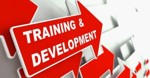training-and-development-education-concept-m (1)