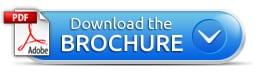 PDF-Brochure-button